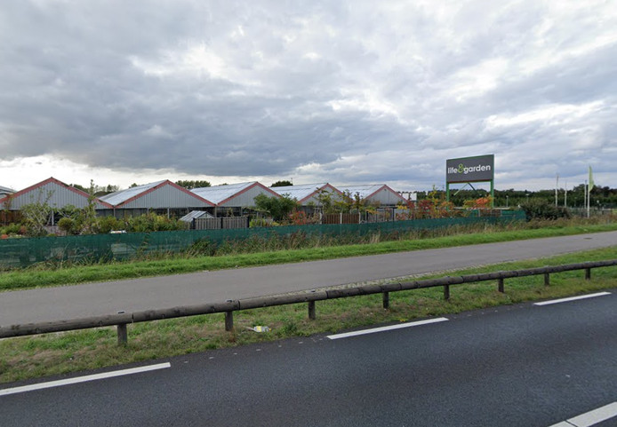 Lif & Garden in Hulst wordt een Intratuin