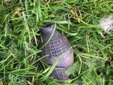 Wandelaars vinden 'handgranaat' langs Gorcumse dijk, maar dat blijkt vals alarm