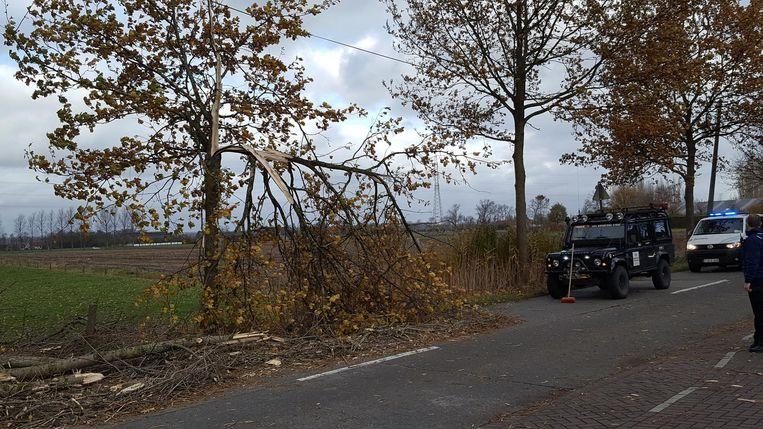 Aan de Moerkerkse Steenweg in Sint-Kruis waaide een boom om waarvan een zware tak op een rijdende auto viel (zie hiernaast).