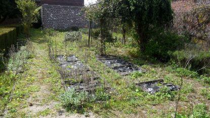 Volkstuintjes in de tuin van het Baljuwhuis?