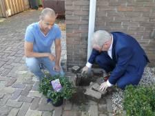Gestel start met Operatie Steenbreek in Den Dungen
