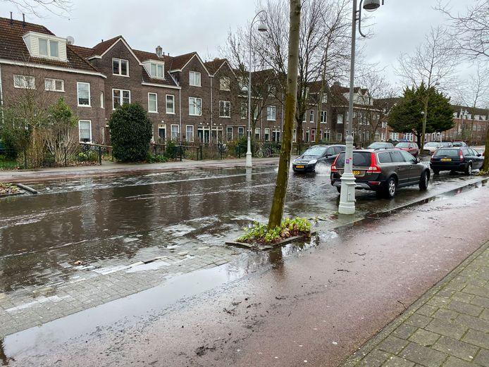Meeuwenlaan, Amsterdam-Noord. Water trekt naar binnen.