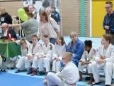 Twinkeltoernooi in Brabant: 'Judo voor mensen met een beperking'