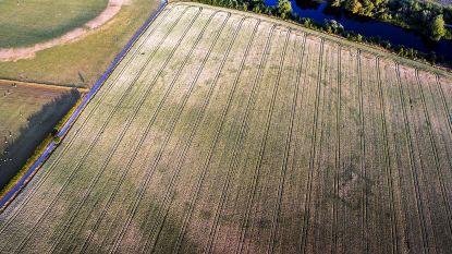 Droogte en drone onthullen nieuw 'Stonehenge' in Ierland