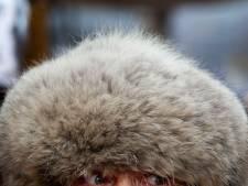 Man met Siberische bontmuts gespot langs de A20