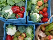 Basisschool De Viersprong wil groente en fruit zonder gif en plastic