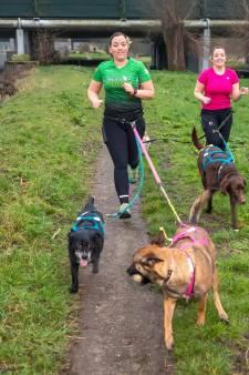 Met je hond door de Broekpolder rennen: 'Pas op, het is verslavend'