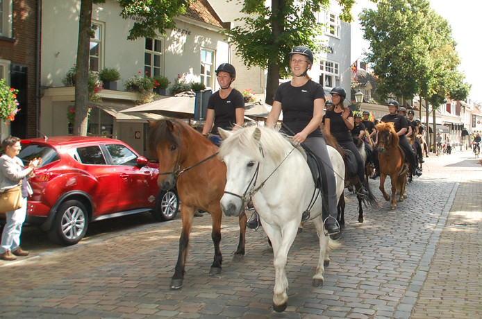 WK IJslandse paarden