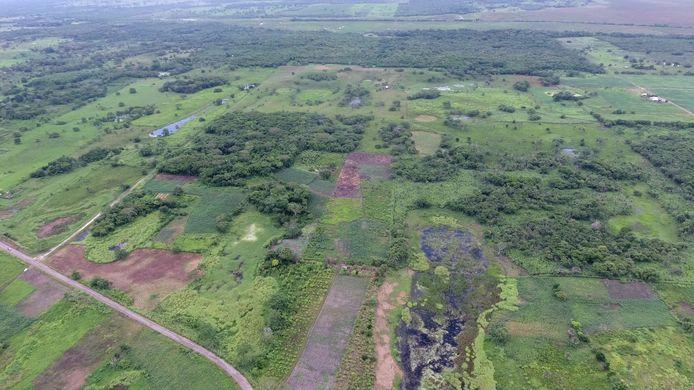 La plus vaste de ces constructions mesure plus de 1,4 kilomètre de long et 400 mètres de large et est située sur le site, trois fois millénaire, d'Aguada Fenix, proche de la frontière guatémaltèque.