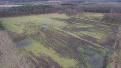 Dronebeelden tonen massale schade door everzwijnen