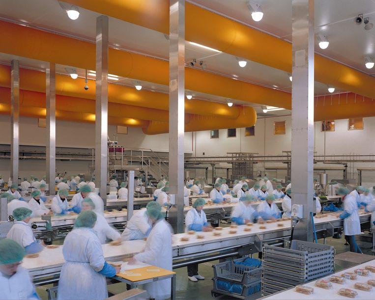 Personeel van de sandwichfabriek van Greencore in Northampton aan het werk aan de lopende band. Beeld null