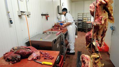 "Franse slagers eisen bescherming tegen ""veganistisch terrorisme"""
