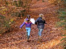 Vijf tips van de boswachter voor de mooiste herfstwandelingen in de regio Utrecht