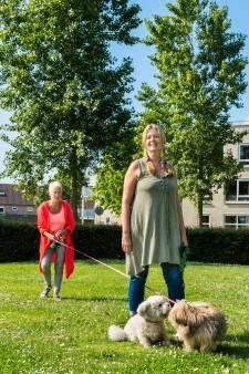 Handtekeningenactie voor veilige hondenuitlaatplek Schoonhoven