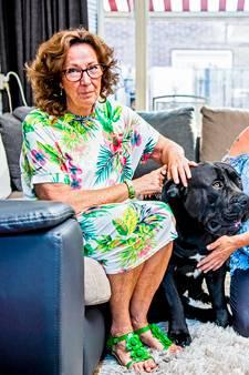 Baasje zieke hond ontroerd: binnen 1,5 uur genoeg geld binnen voor operatie