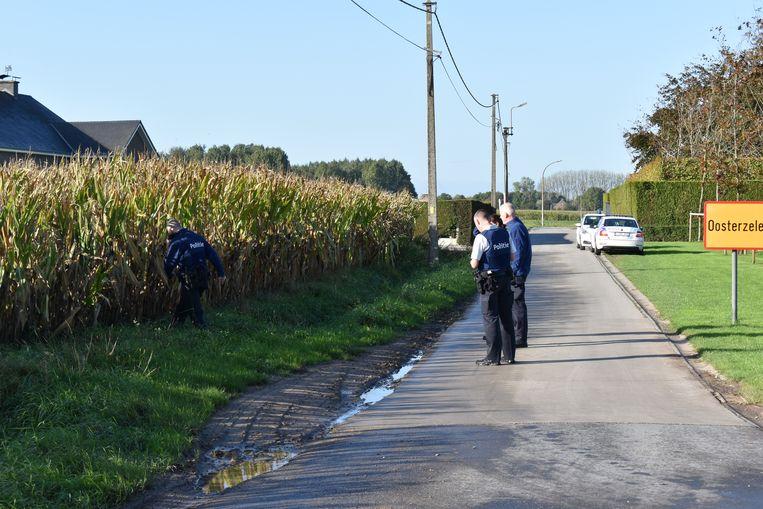 De politie kon drie illegalen oppakken in een maïsveld.