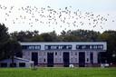 In het vrijdag geopende nieuwbouwcomplex bij Nispen is ruimte voor 180 arbeidsmigranten.