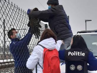 Politie redt buizerd met gebroken vleugel