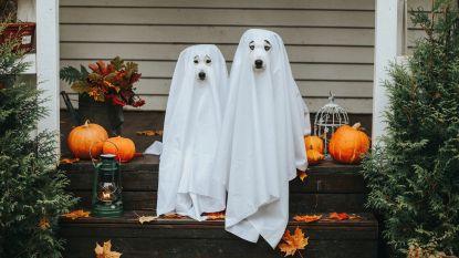 Outfit-inspiratie: 7 x Halloweenkostuums die je makkelijk zelf kan maken