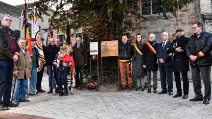 Oud-strijders onthullen extra gedenkplaat op Kamiel Van Belleplein