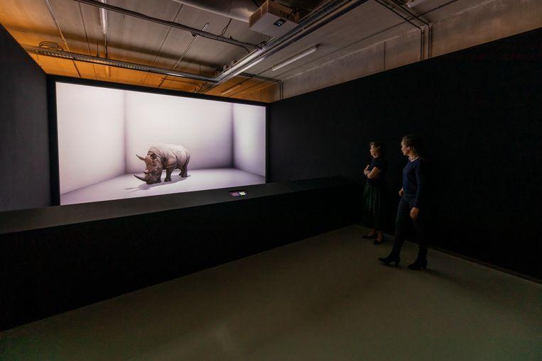 'The Subsitute', een replica van de noordelijke witte neushoorn, waarvan het laatste mannetje eind 2018 uitstierf. Beeld Ruud Balk