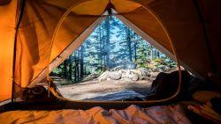 5 kampeertips voor dummies