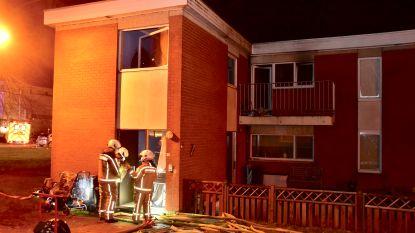 Bewoner sterft na hevige keukenbrand in Ieper, brandweerman gewond afgevoerd