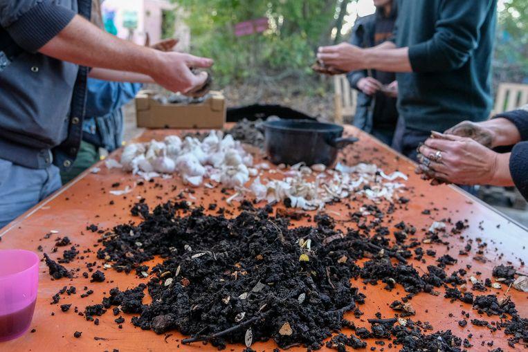 Het buurtcomité organiseert onder meer een workshop 'zaadbommen' maken.