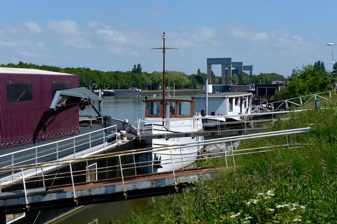 Vredelievend liggen ze erbij, de woonboten in de Oostkanaalhaven in NijmegenWest. Maar de bewoners vrezen voor hun toekomst