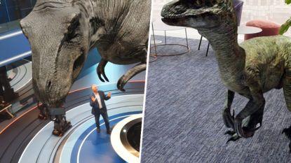 Met dit Google-trucje tover je een dinosaurus tevoorschijn in je woonkamer
