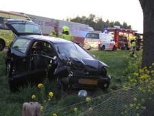 Automobilist knalt tegen boom naast snelweg A73 bij Heumen
