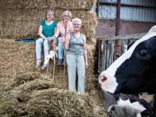 Boerenpelgrimstocht Haarle dingt mee naar diaconale prijs