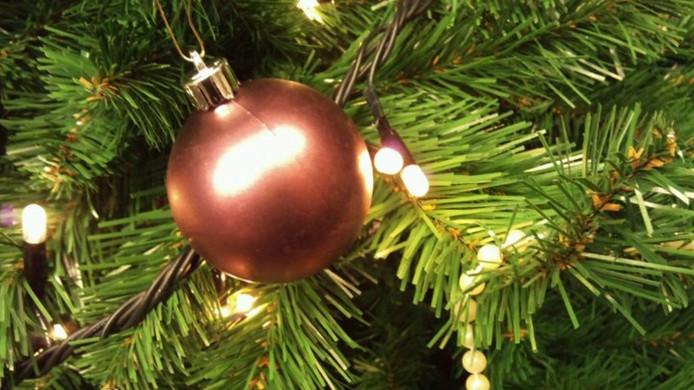 Dure Nordman Blijft Populaire Kerstboom Moerdijk Bndestem Nl