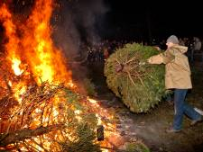 Kerstbomen verbranden kan écht niet meer; Rosmalense wijken stoppen ermee