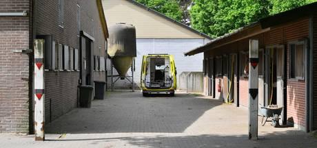 Meisje gewond na val van paard in Leende