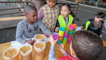 Kinderen leven zich uit op grootste overdekte speelpark van Brussel