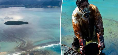 Plus de 1.000 tonnes de pétrole se sont échappées d'un navire au large de l'Île Maurice