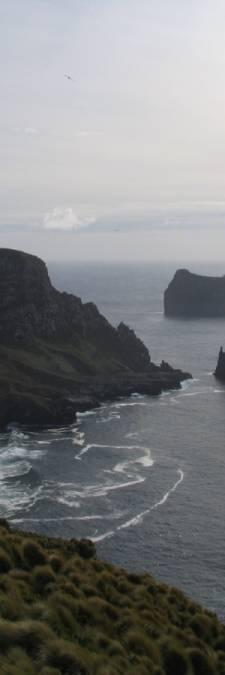 Commando's checken muizenplaag op eiland bij Zuidpool