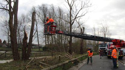 Storm blaast daken weg en bomen omver