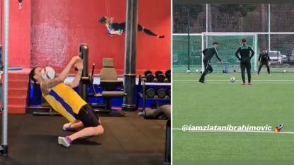 In het krachthonk of op een trainingsveld in Zweden: Zlatan blijft ook op z'n 38ste hoge ogen gooien