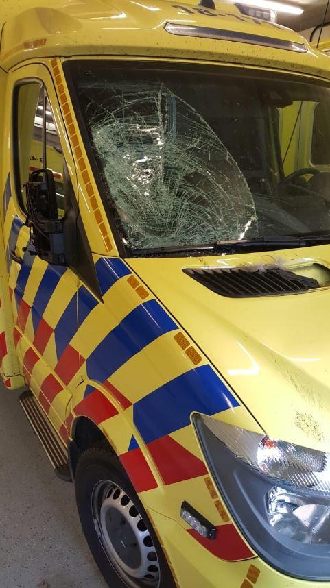 Ganzen vlogen afgelopen nacht tegen de ambulance aan op de Hoekseweg.