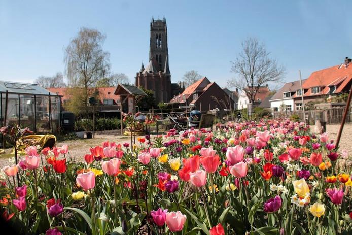 De TorenTuin in Zaltbommel