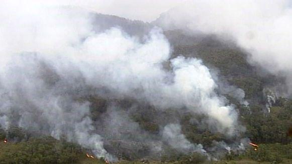Bosbranden in deelstaat New South Wales (22 december 2019).