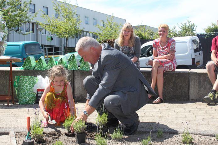 Tegel eruit, plant erin. Archieffoto (2014, actie in Honselersdijk).