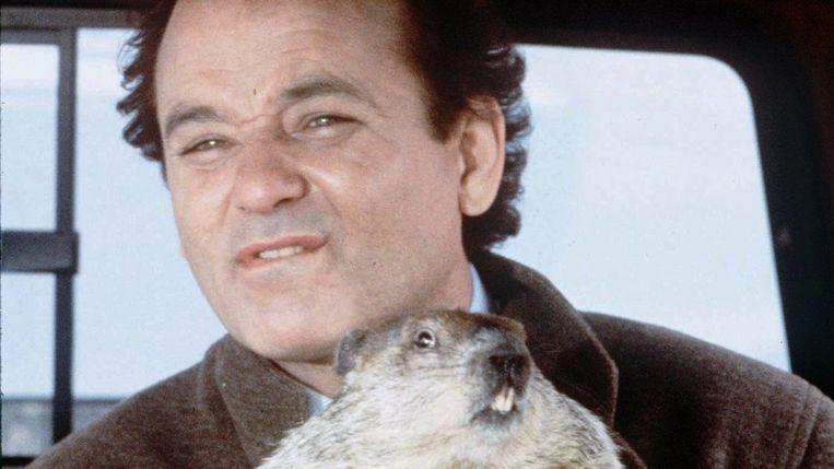 Bill Murray in Groundhog Day van Harold Ramis. Beeld
