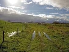 Meepraten over buitengebied Schouwen-Duiveland
