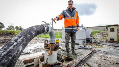 """""""Vlaamse regering deed niets om grondwater op peil te houden"""""""
