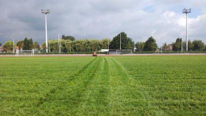 Voetbalvelden worden vroeger dan gepland heringezaaid door coronastop