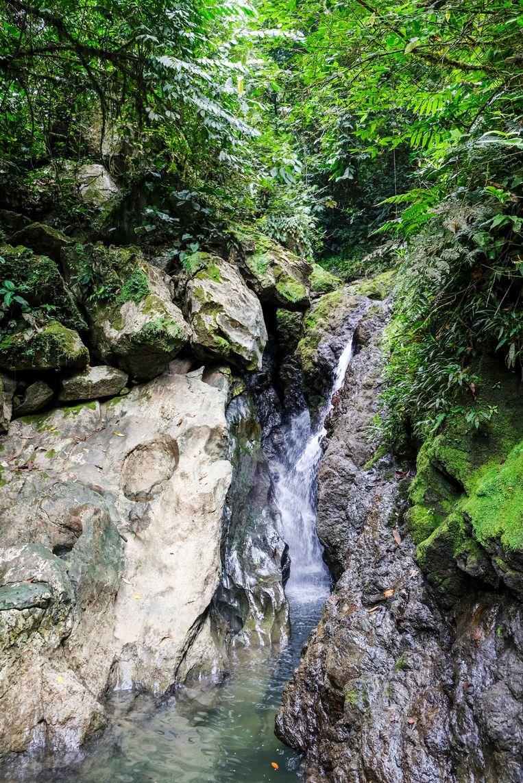 De  'Waterval van de Liefde' in de jungle bij Guachalito. Beeld Ynske Boersma