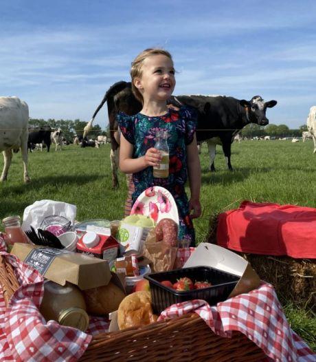 Boerenpicknick met streekproducten uit de Bommelerwaard in plaats van Beleef de Boerderij